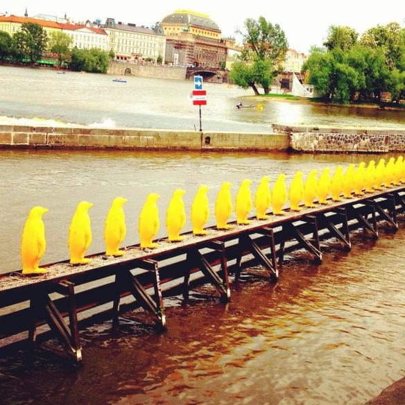 Prague p-p-p-pengiuns